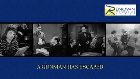 A Gunman Has Escaped (16+)