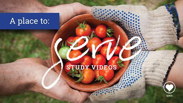 Serve Study Videos