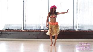 Hawaiian Promo