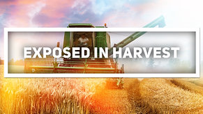 Exposed In Harvest