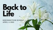 Back to Life - Resurrection Sunday - April 04,  2021