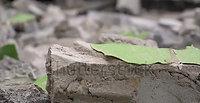 Fractured Concrete