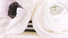 Ranunculus & Anenome