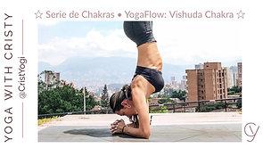 Serie Chakras / Dia 5 ☆ Vishuda
