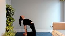 Camel Yoga Class - Livestream Replay