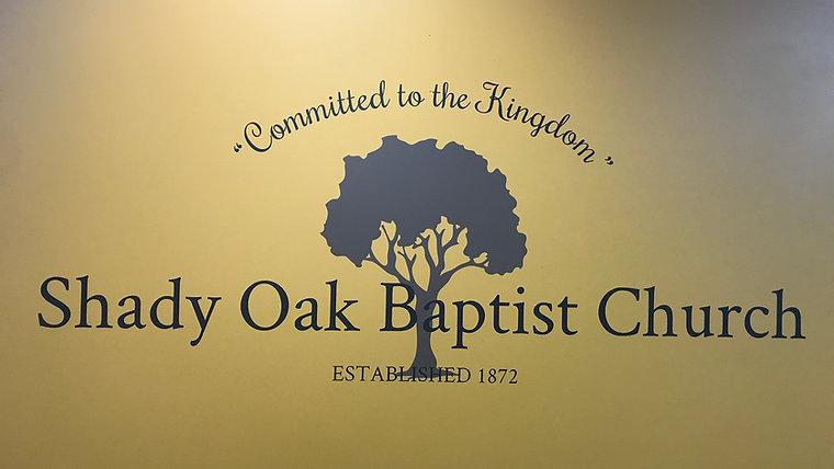 The Shady Oak Channel