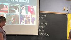 Pet Adoption Biography Workshop