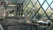 Pompeii Italy Europe People 06