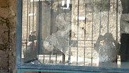 Pompeii Italy Europe People 08