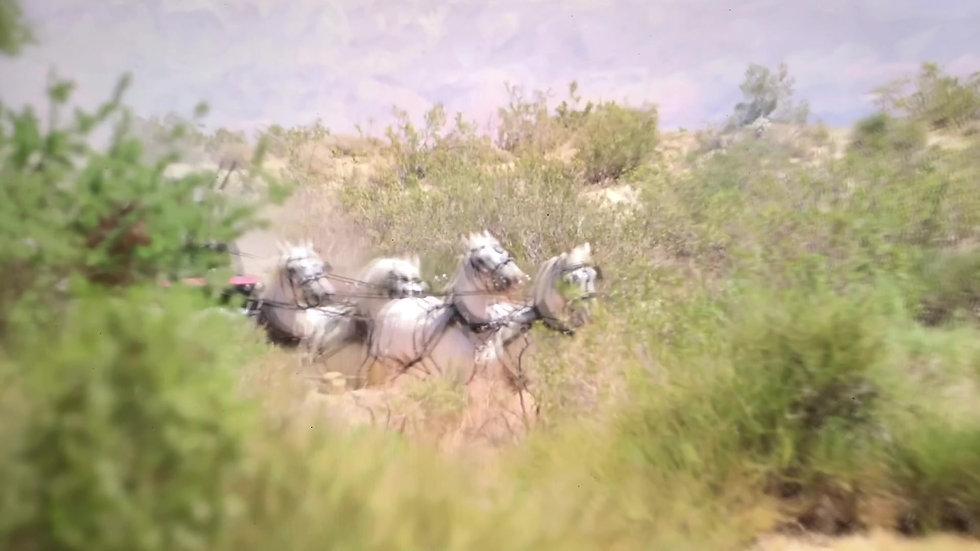 Whitehorse MA footage YT