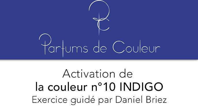 Activation de la couleur n°10 INDIGO