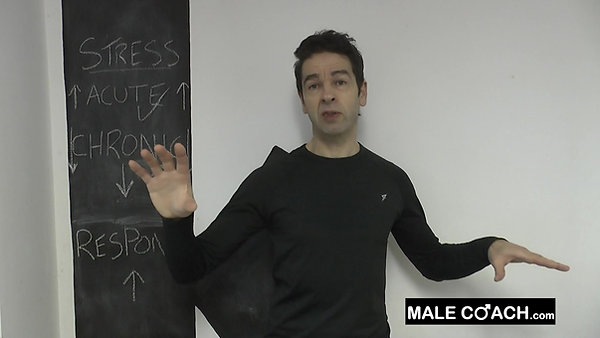 Male  Body Response & Stress