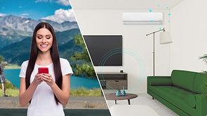 ASP Technology RM4-Mini