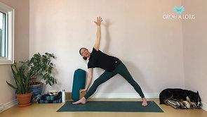 Side Body as Gateway to Lower & Upper Body
