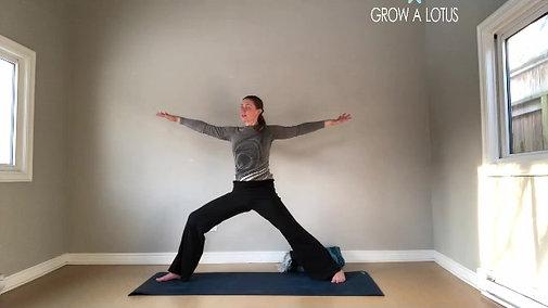Meditation & Movement