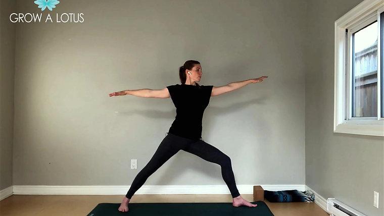 Beginner Yoga Program: $12/month