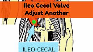 Ileo Cecal Valve On Another