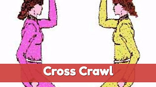 Self Cross Crawl