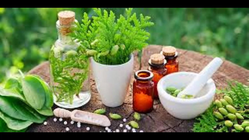 What is an Herbalist