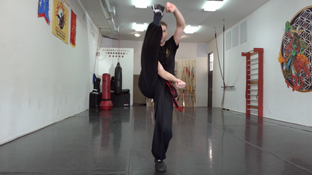 Northern Shaolin Eagle Claw Kicks Level I