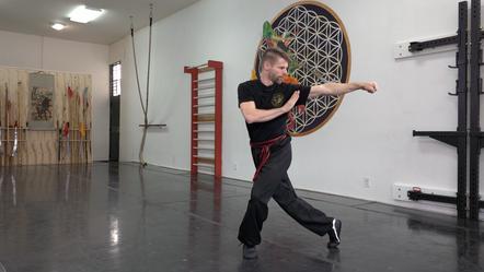 Eagle Claw Kung Fu Basic Hand Strikes