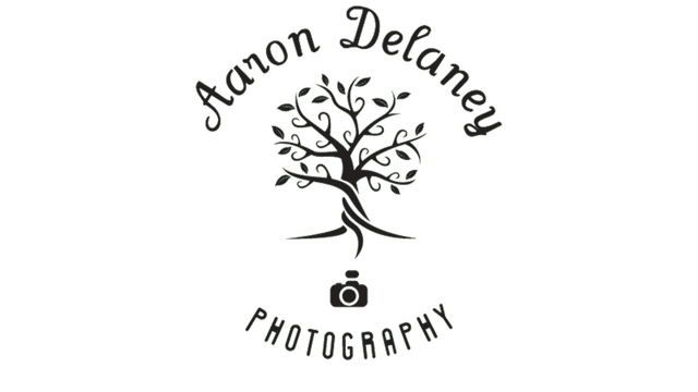 Aaron Delaney Wedding Videography