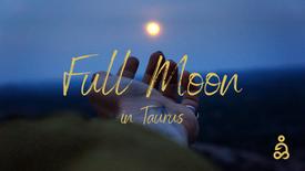 November 19 | 6PM (PST) | Full Moon in Taurus