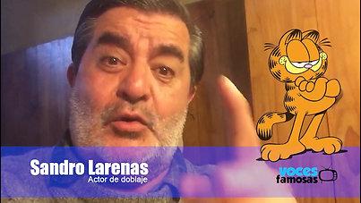 Sandro Larenas