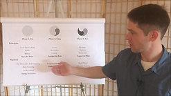 Phase 1 Qigong Principles