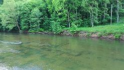 Riverside Canoe