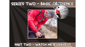 VIP - Series 2 - Part 2 - Watch Me and Leave It