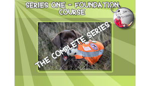 Complete Foundation Series