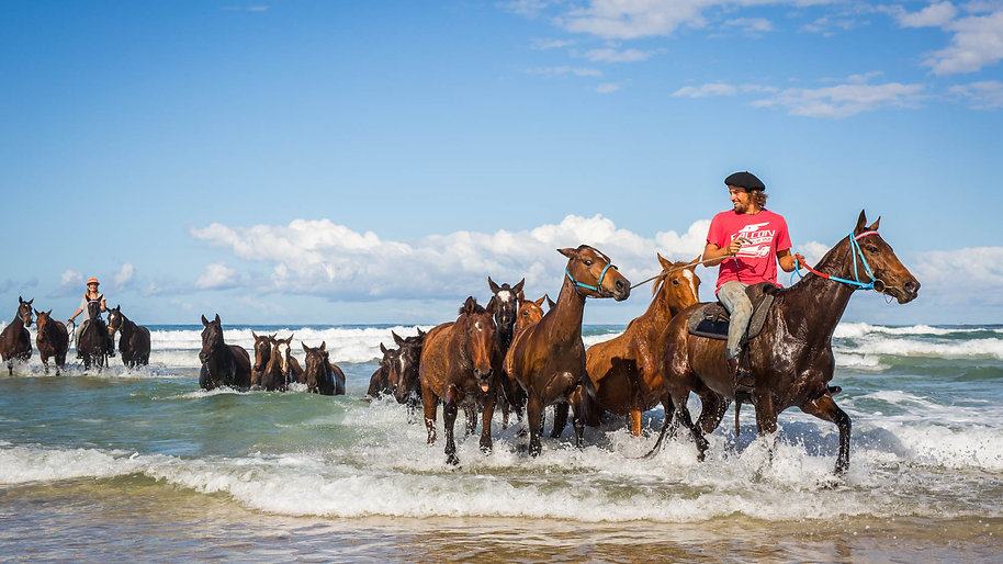 Surfing Cowboys Polo & Racing