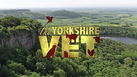 The Yorkshire Vet (Channel 5)