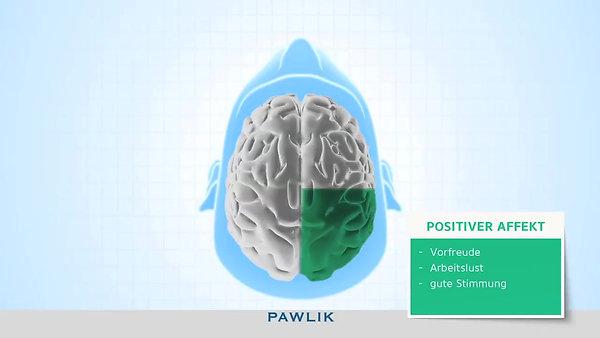 PAWLIK Handlungssteuerungsmodell Affekte und Emotionen