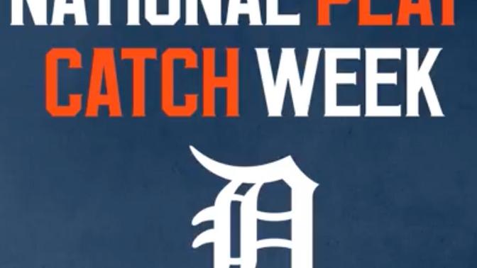Detroit Tigers Celebrate Play Catch