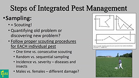 Integrated Pest Management- Cummings