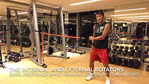15 BRBTC - The internal and external rotators