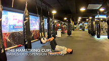 16B The Hamstring series - the hamstring curl