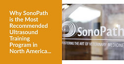 Why SonoPath is the # Recommended Program in the US