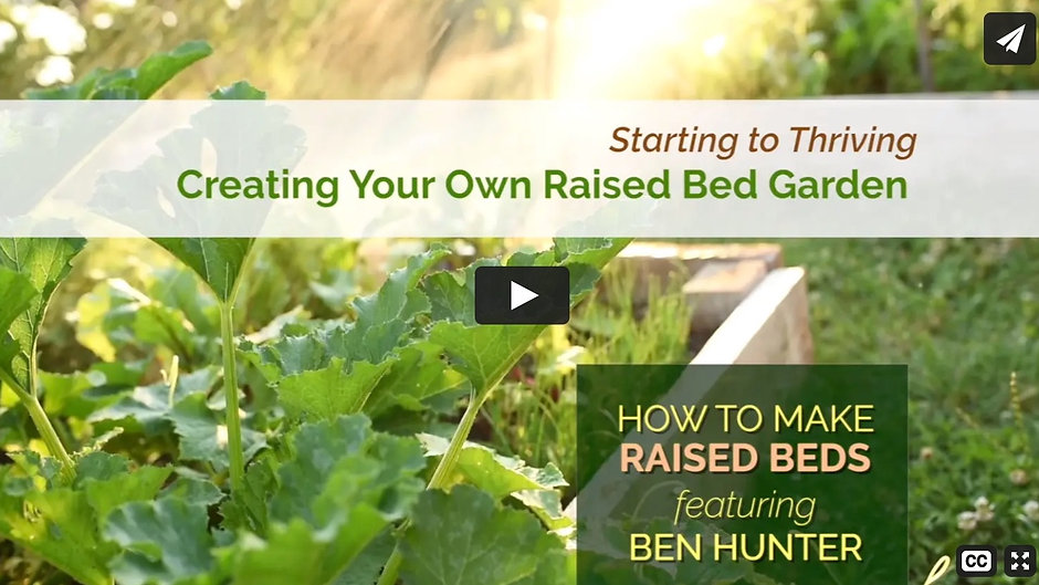 Creating Raised Beds