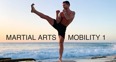 Mobility for Martial Arts
