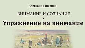 Упражнение на внимание | Александр Шевцов