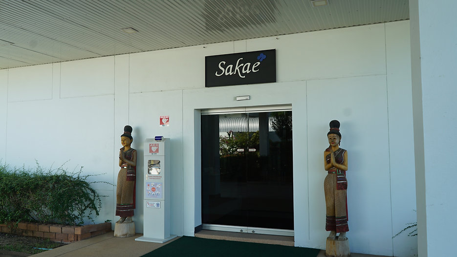 The Journey Of Sakae Lace 2020
