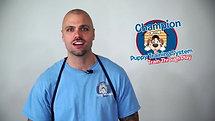 Training Video (Champs Dog Training)