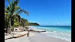 17 - Costa Rica (Cahuita et Alajuela)