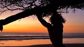 Excursions - Dreamsea Surf Camp Costa Rica