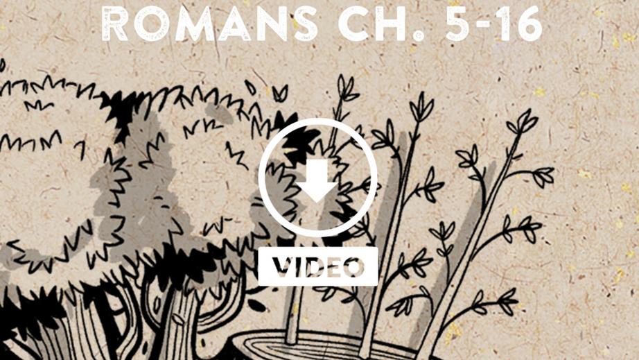 Romans Part II