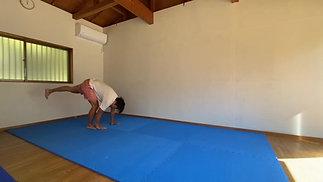 ②動き道場復習用-体幹の運動を四肢に伝える