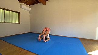 ①動き道場マスタークラス復習用-体幹重心のコントロール-